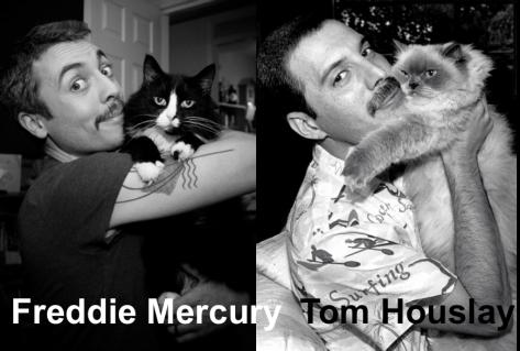 moustachesandcats